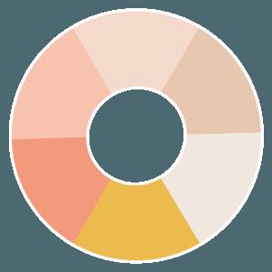 favicon - roue chromatique